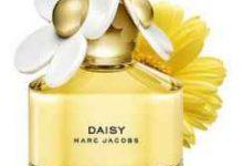 daisy香水是什么牌子-三思生活网
