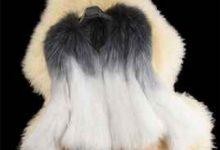 貂皮掉毛什么原因 貂皮自然脱毛现象-三思生活网