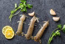 吃皮皮虾的禁忌-三思生活网