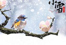 小雪节气的天气特点-三思生活网