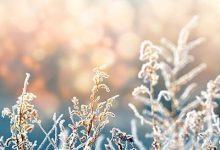 冬天皮肤痒是什么原因-三思生活网