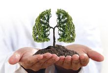 为何秋季要养肺 秋季养肺的重要性-三思生活网