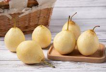 冬天老人吃什么水果最好-三思生活网