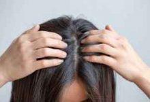发质不好毛躁怎么改善  -三思生活网