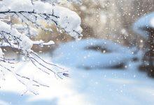 今日小雪时节 养生手册请收好-三思生活网