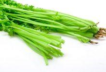 野芹菜的功效与作用 吃野芹菜的好处-三思生活网