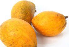 蛋黄果的功效与作用 蛋黄果的好处有哪些-三思生活网