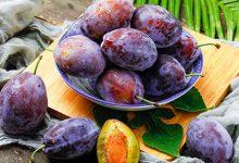 西梅是什么季节的水果 西梅的功效与作用-三思生活网