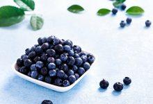 蓝莓干的功效与作用-三思生活网