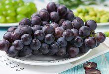 葡萄的热量 葡萄的热量是多少大卡-三思生活网