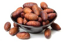 蚕蛹的营养价值与功效 吃蚕蛹的好处-三思生活网
