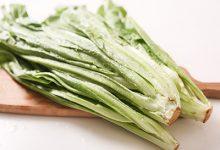 油麦菜和莴笋叶的区别 如何区分油麦菜和莴笋叶-三思生活网