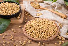 白醋泡黄豆有什么功效和作用 白醋泡黄豆的正确做法-三思生活网
