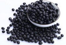 黑豆泡醋治白发做法 黑豆泡醋有什么功效和作用-三思生活网