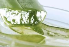 芦荟胶能当睡眠面膜用吗 使用方法是怎样的-三思生活网