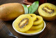 奇异果和猕猴桃是同一种水果吗 猕猴桃的功效与作用-三思生活网