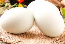 鸭蛋的营养价值 鸭蛋的功效与作用-三思生活网