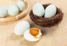 咸鸭蛋的功效与坏处 吃咸鸭蛋的利弊-三思生活网