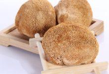 吃猴头菇的禁忌 吃猴头菇有哪些注意事项-三思生活网