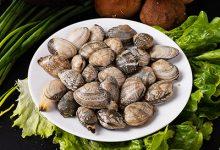 花蛤的营养价值及功效 吃花蛤有哪些好处-三思生活网