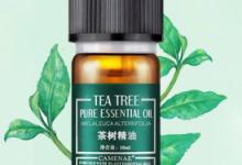 茶树精油能收缩毛孔吗  孕妇能用吗-三思生活网