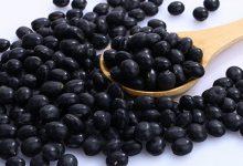 吃黑豆有啥好处 黑豆的功效与作用-三思生活网