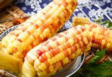 糯玉米的功效与作用 吃糯玉米有什么好处-三思生活网