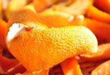橘子皮泡水喝有什么功效 橘子皮泡水喝的好处-三思生活网