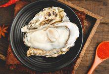 生蚝营养价值及功效与作用 吃生蚝有什么好处-三思生活网