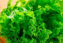 生菜怎么做好吃又简单 怎么做生菜好吃又简单-三思生活网