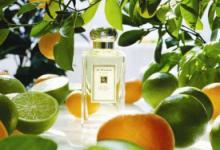 柑橘调香水好闻吗 柑橘调香水有哪些品牌-三思生活网