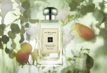 香水级别怎么分 香水香型有几种-三思生活网