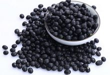 黑豆的营养价值及功效与作用 吃黑豆的好处-三思生活网
