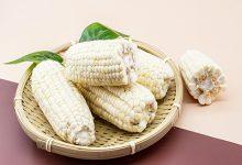 粘玉米的营养价值及功效与作用 吃粘玉米的好处-三思生活网