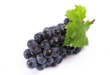 葡萄和提子的区别 如何区分葡萄和提子-三思生活网