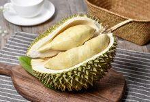 榴莲蜜和菠萝蜜的区别 如何区分榴莲蜜和菠萝蜜-三思生活网
