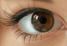 眼结石是怎么形成的 怎么预防-三思生活网