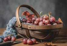 葡萄籽能吃吗 葡萄籽的功效与作用-三思生活网
