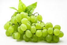 青葡萄的功效与作用 吃青葡萄的好处有哪些-三思生活网