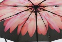 蕉下小黑伞价格多少钱  下雨能用吗-三思生活网